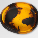 Dinosaur Designs Small Resin Earth Bowl – Tortoiseshell
